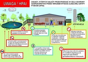 APEL do hodowców drobiu  Ministra Rolnictwa i Rozwoju Wsi oraz Głównego Lekarza Weterynarii